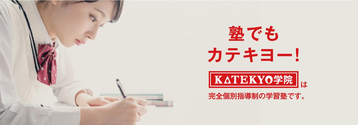 塾でもカテキョー!KATEKYO学院は完全個別指導制の学習塾です。