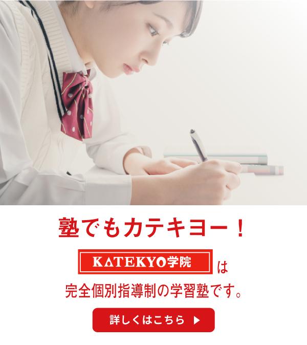 塾でもカテキョー!KATEKYO学院は完全個別指導制の学習塾です。詳しくはこちら。